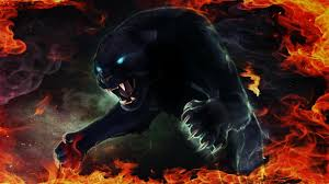 panther black panther blue eyes #fire ...