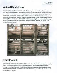 hypocrisy essay hypocrisy in the scarlet letter informatin for  animal rights essay topics