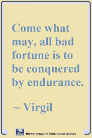 Endurance Quotes Simple Bizwaremagic's Helpful Quotes On Endurance