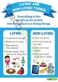 Venn Diagram Living And Nonliving Things Living And Non Living Things Poster Living Nonliving