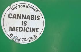 medical marijuana essays medical marijuana essay argumentative essay on weed legalization medical marijuana research archives marijuana legalization medical marijuana