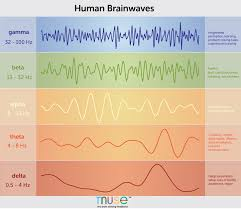Hz Frequency Chart A Deep Dive Into Brainwaves Brainwave Frequencies Explained