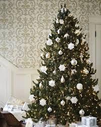 ... Vermont White Spruce Tree-15 ...