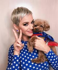 Katy Perry Wearing Short Layered Pixie Haircut With Star Print Blue