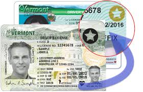 real id department of motor vehicles