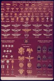 Army Mos Chart United States Army Enlisted Rank Insignia Of World War Ii