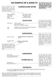 successful curriculum vitae templates cipanewsletter breakupus gorgeous more resume templates primer fetching