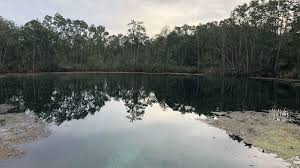 Eagle's nest is a large cave system on chassahowitzka wildlife management area property about the woods near weeki wachee. Body Of Missing Diver Found At Eagle S Nest In Hernando County Called Mount Everest Of Underwater Cave Diving Orlando Sentinel