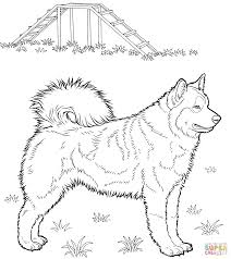 Husky Coloring Page From Dogs Category