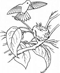 Small Picture Coloring Pages Animals And Their Babies Coloring Pages