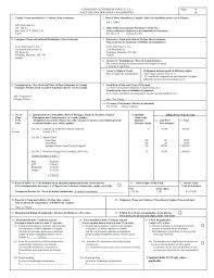 Custom Invoice Format Us Customs Invoice Template