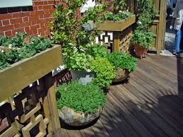 Layout Of Kitchen Garden How To Smartly Organize Your Kitchen Garden Design Kitchen Garden