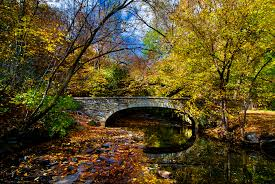 Image result for Minnehaha Creek during fall in minnesota