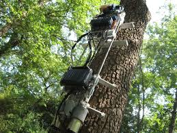 picture of tree climbing robot