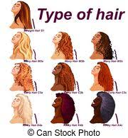 Vector Illustration Of A Hair Texture Chart Hair Types Icon