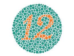 Kanehara Ishihara Test Chart Books For Color Deficiency 24