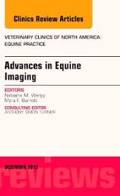 Advances in Equine Imaging, An Issue of Veterinary Clinics: Equine  Practice, Volume 28-3 - 1st Edition