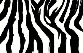Zebra Patterns New Zebra Pattern Desktop Wallpaper 48 Ongur