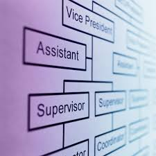Small Business Organizational Structure Chart Typical Organizational Structure Of A Small Business Your