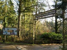 A Weekend At Center Parcs Longleat Forest  Stressy MummyLongleat Treehouse