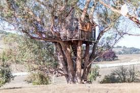 Best 25 Tree House Resort Ideas On Pinterest  Day Spa Near Me Treehouse Vacation California
