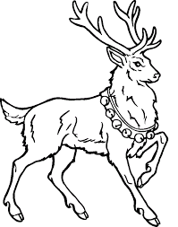 Small Picture Download Free reindeer coloring pages for christmas Grootfeestinfo