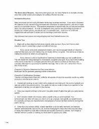 Resume Career Summary Examples New Example Resume Objectives