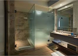image of picture frosted glass shower doors ideas
