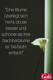 Pinterest Zitate Kleine Lebensweisheiten Und Sprüche S 16 Galade