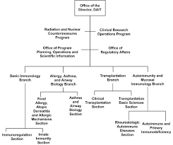 Nih Organizational Chart Division Of Allergy Immunology And Transplantation