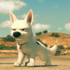 Bolt! - Disney's Bolt Photo (34335639) - Fanpop