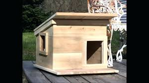 heated outdoor cat house plans lovely outdoor cat house plans winter luxury diy insulated cat house
