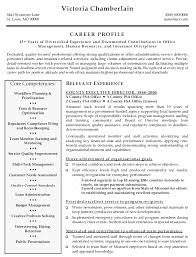 Resume Templates For Executives Extraordinary Insurance Executive Resume Template Dadajius