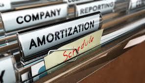 Ameritization Schedule Loan Amortization Schedule Score
