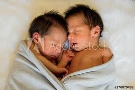 newborn baby twins boy and