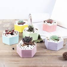 office flower pots. Best Hot Selling Ceramic Bonsai Pots Mini Multicolor Flowerpots Home Desktop Succulent Planters Garden Supplies Bedroom Office Decoration Under $1.31 Flower