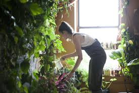Meet A Woman Who Keeps  Plants In Her Brooklyn Apartment - New york apartments outside