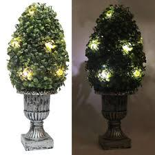 Lighted Outdoor Topiary