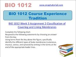 Classification Of Covering And Lining Membranes Complete The Following Chart Bio 1012 Course Experience Tradition Ppt Download