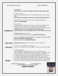 executive resume writer professional resume writing service for executives resume