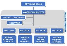 Generic Org Chart Organizational Chart Crhrdc