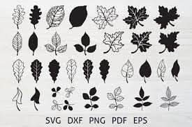 Leaf icons and vector packs for sketch, adobe illustrator, figma and websites. Fall Leaves Cutting Svg Bundle Autumn Leaves Clipart 915885 Cut Files Design Bundles
