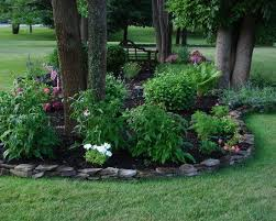 Innovative Landscaping Ideas Around Trees Landscape Around Tree Groupings  For Under The Birch Trees After