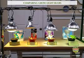 Lighting for houseplants Rotating Grow Lights For Beginners Start Plants Indoors The Foodie Gardener Grow Lights For Beginners Start Plants Indoors The Foodie Gardener