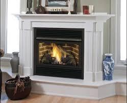 gas ventless fireplace insert majestic vent free fireplaces intended for vent free gas fireplace insert decorating