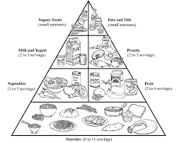 Small Picture Food Pyramid Coloring Page Wonderful Coloring Food Pyramid