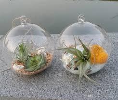 2018 globe glass terrarium kit air plant succulent terrarium hanging candle holder wedding or home decor from knikglass 3 22 dhgate com