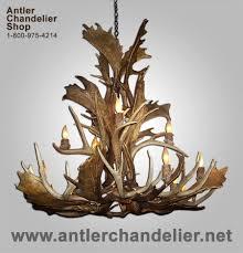 real antler ls real deer antler chandelier antler chandelier real