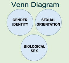 Gender Venn Diagram This Fact Isnt That Complex And Yet So Many People Strugg