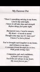 Dog Passing Quotes Best My Forever Pet Grieving Pinterest Dog Animal And Pet Loss